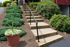 Mulching garden beds with bark